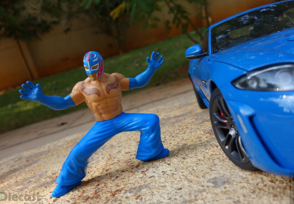 Meet my WWE Super Star Figurine – Rey Mysterio